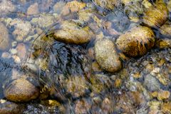 Stones on the river bottom. Small stones on the river bottom royalty free stock images