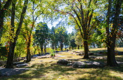 Stones River National Battlefield. Confederate Civil War Stock Image
