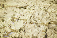 Stones in the river at Suratthani. Stones in the river at Suratthani, Thailand Royalty Free Stock Images