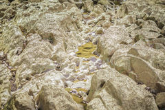Stones in the river at Suratthani. Stones in the river at Suratthani, Thailand Royalty Free Stock Photos