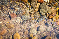 Stones in river water. Background image of stone in river water Stock Photo