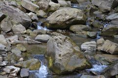 Stones River water nature forest Stock Photo