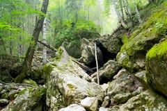 Stones. The rocks on a mountain path Royalty Free Stock Photos