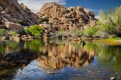 Lake in Joshua Tree National Park royalty free stock image