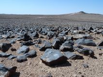 Stones in the Sahara. Desert, Africa Royalty Free Stock Photos