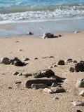 Stones on sand beach close up Royalty Free Stock Photography