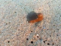 Stones on the sand royalty free stock photo