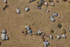 Stones on the sand. The stone in the sand which is located on the beach near the sea Stock Photography
