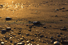 Stones on the sand at the sunset Royalty Free Stock Image
