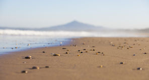 Stones on sandy beach Royalty Free Stock Photography