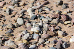 Stones on sandy beach Royalty Free Stock Image
