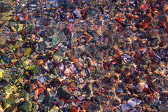 Stones sea bottom pattern, colored stone, clear water. Stock Image