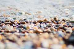 Stones and seaflow on the beach Royalty Free Stock Photo