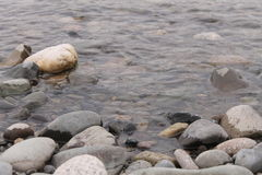 Stones on the shore Royalty Free Stock Photo