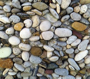 Stones. Small stones in various colors Stock Images