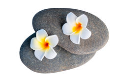 Stones for spa treatments and exotic flowers close up Royalty Free Stock Images