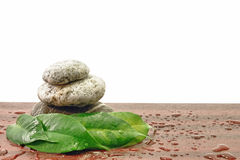 Stones Spa Zen harmony. With water drops Royalty Free Stock Photo