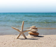 Stones and starfish Royalty Free Stock Photos