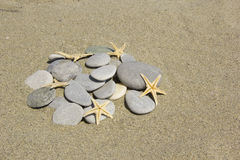 Stones with starfishes Stock Image