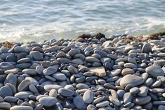 Stones on the steep seashore. Close-up on the beach, light stones, sharp sharpness Stock Photos