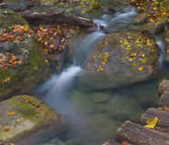 Stones in the stream. Little waterfall in Crimea mountains in autumn Royalty Free Stock Photo
