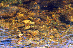 Stones in a clear mountain stream with ripples. Royalty Free Stock Images