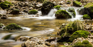 Stones in the stream, Ore Mountains Royalty Free Stock Photo