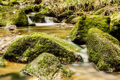 Stones in the stream, Ore Mountains Stock Photos