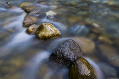 The stones in streams. Clear streams, a few rocks line a row, the river washed the sleek smooth, very nice Royalty Free Stock Images