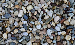 Stones texture background. Wet rock stones texture nature pattern background Royalty Free Stock Images