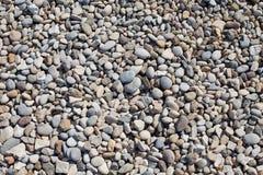 Free Stones Texture Pebbles Vs. Flint Stock Photos - 26627383
