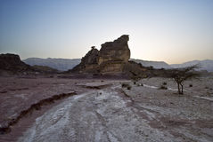 Stones of Timna park Stock Images