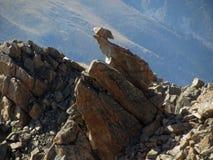 Stones on top of mountains Stock Photo