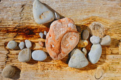 Stones and tree. The sea pebble lays on an old tree at ocean Stock Image