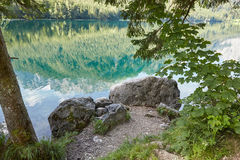 Stones and trees in front of Vorderer Langbathsee in Austria, Sa. Stones and trees in front of beautiful Vorderer Langbathsee in Austria, Salzkammergut Stock Photography