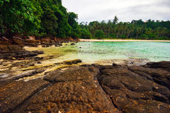 On the stones tropical beach Stock Photography