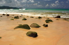 Stones on tropical, sandy beach Royalty Free Stock Photo