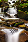 Stones Unde The Water Stock Image