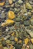 River Stones in Rippling Water. Stones under the surface of a shallow, crystal clear, mountain river. The rippling water gives them a painted effect royalty free stock photo