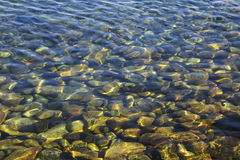 Stones under transparent water Royalty Free Stock Photography