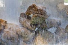 Stones under water Stock Image