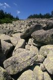 Stones in Vitosha royalty free stock image