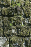 Stones wall as a background. Stock Photos