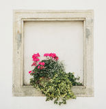 Stones walled window with potted flowers. Building facade royalty free stock photos