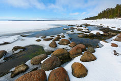 Stones, water, snow. Gulf of Finland in the spring. Snow thawing Stock Image