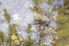 Stones and water surface. Stones and water surface in the riverside Stock Photos