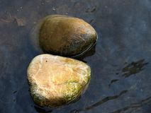 Stones in water. Two stones in fresh water Royalty Free Stock Image