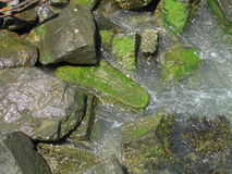 Stones in the water, USA. Г. Royalty Free Stock Photography