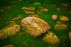Stones in Water Royalty Free Stock Photos
