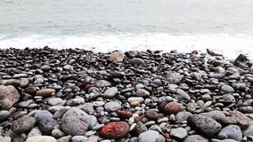 Stones with waves on beach of shore or coast of ocean or sea stock video